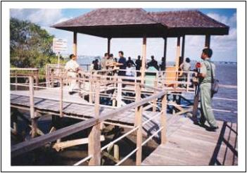 mangrove-anjungan.jpg